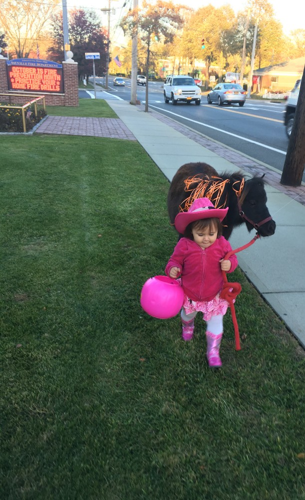 Affordable Pony Rides Ponies for Birthday Parties Long Island NY